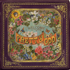 Cover: Panic at the Disco - Pretty. Odd.